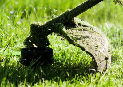Lawn Mowing Newcastle | Edging Newcastle | Whipper Snipping Newcastle | Lawn Maintenance & Gardening Newcastle