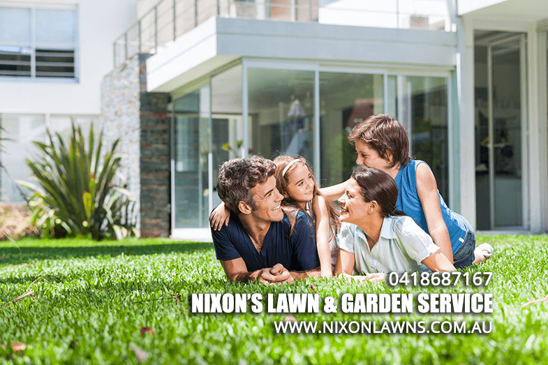 4 Ways You Can Improve Your Lawn | Lawn Care Newcastle
